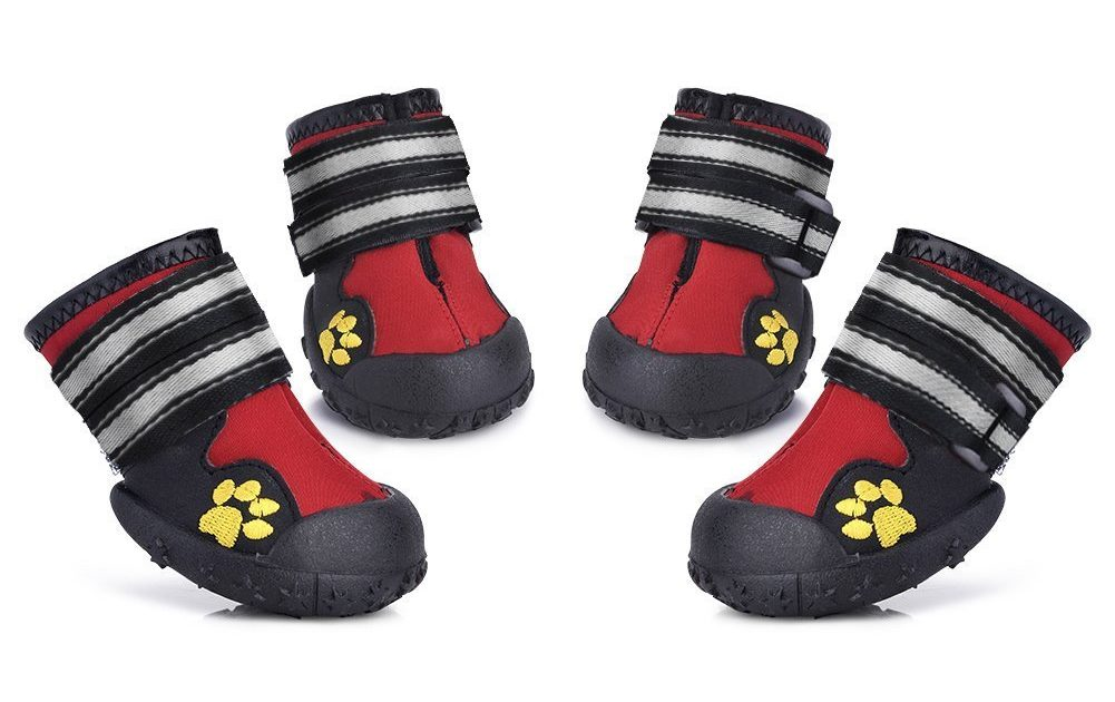 fbf9943467e Top 9 Dog Boots for Winter & Cold Weather – American Kennel Club