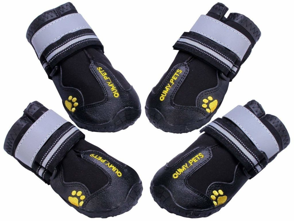 where to buy available best choice Top 6 Dog Boots for Winter & Cold Weather – American Kennel Club