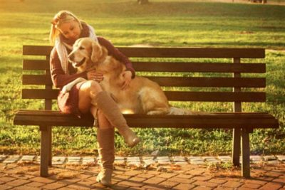 Woman on a bench with a golden retriever