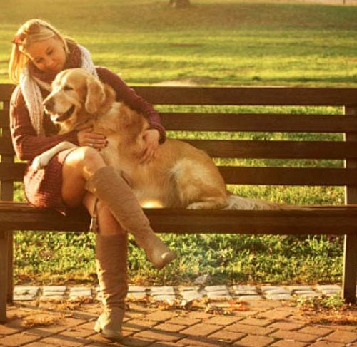 Top 10 American Cities For Dogs And The People Who Love Them