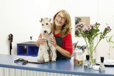 safe dog grooming with AKC