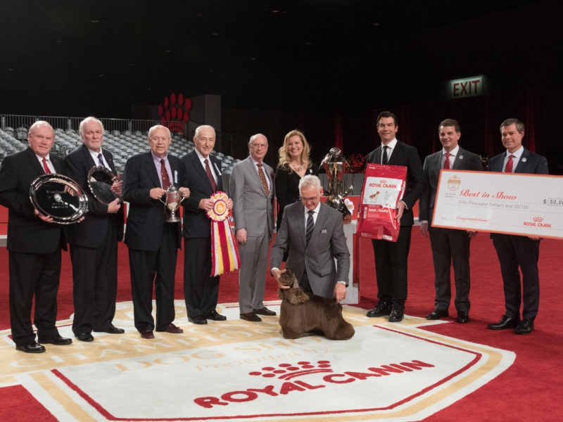 AKC National Championship presented by Royal Canin