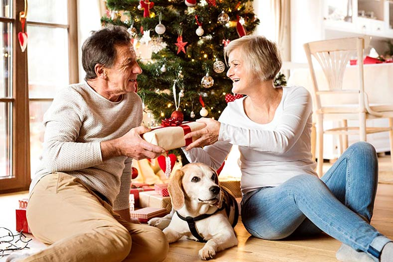 Dog lovers xmas gifts for wife