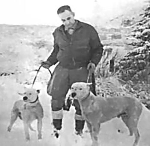 Dogo Argentino History