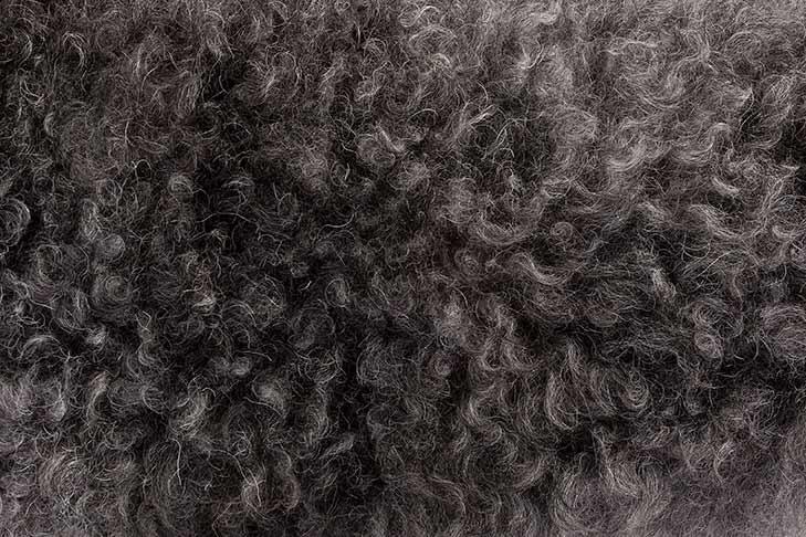 Pumi coat detail