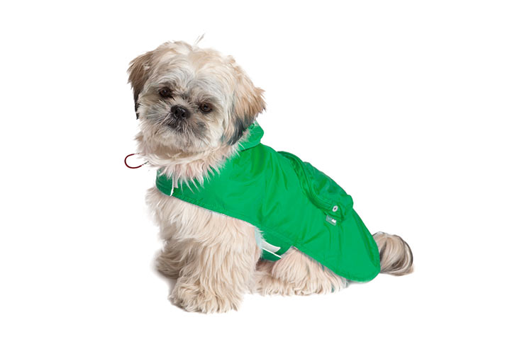 Shih Tzu Raincoat Green