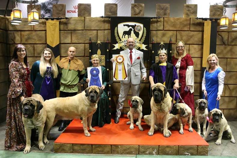 National Dog Show Individual Breeds