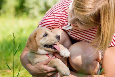 puppy-with-woman-header.jpg