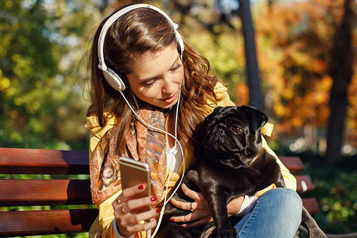 29 Dog Songs: Love, Loss, and Appreciation in Songs About Dogs