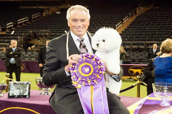 WKC-2018-winner-Bichon-Frise-hero