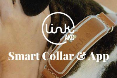 LINK AKC Smart Collsr