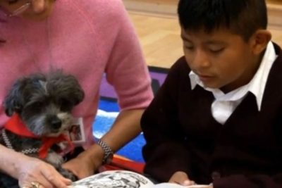Child reading with a therapy dog