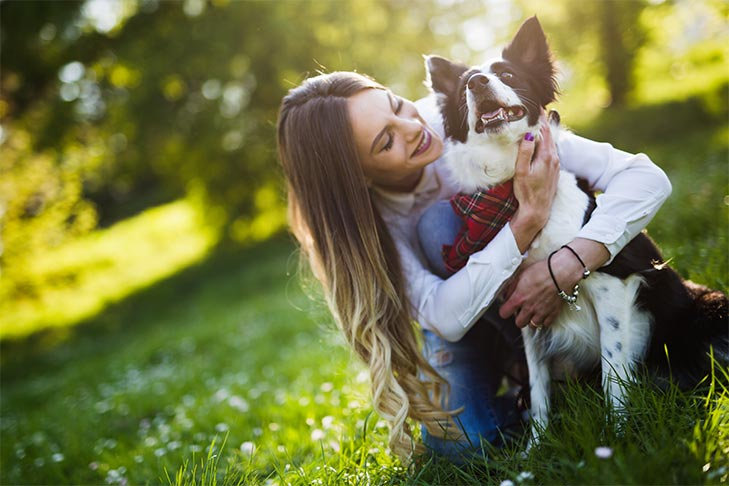 Quiz: Are You A Responsible Dog Owner? – American Kennel Club
