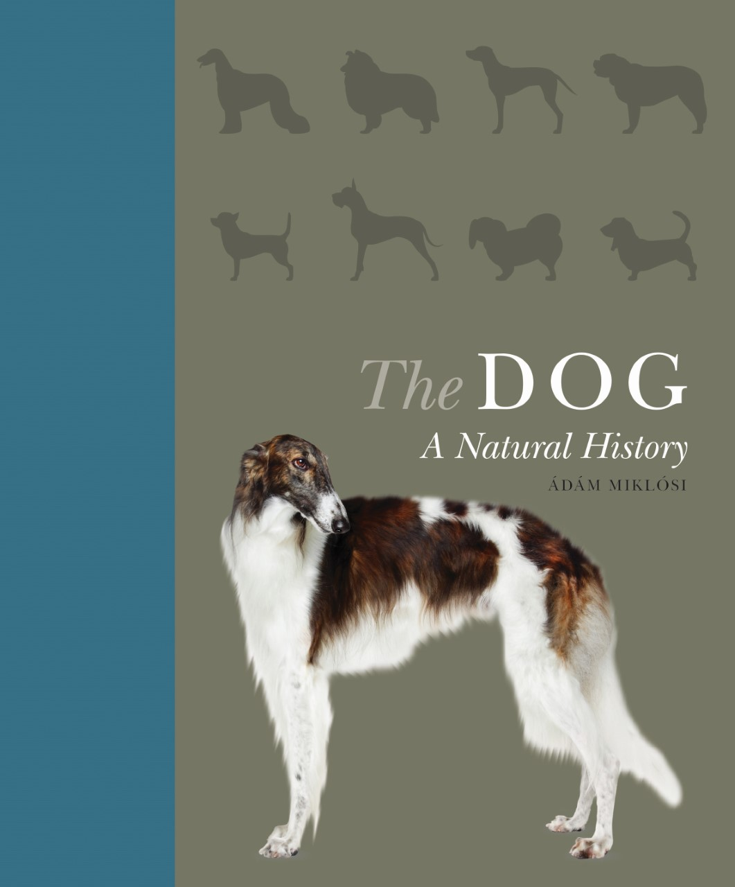 The_Dog_book_feature__6_