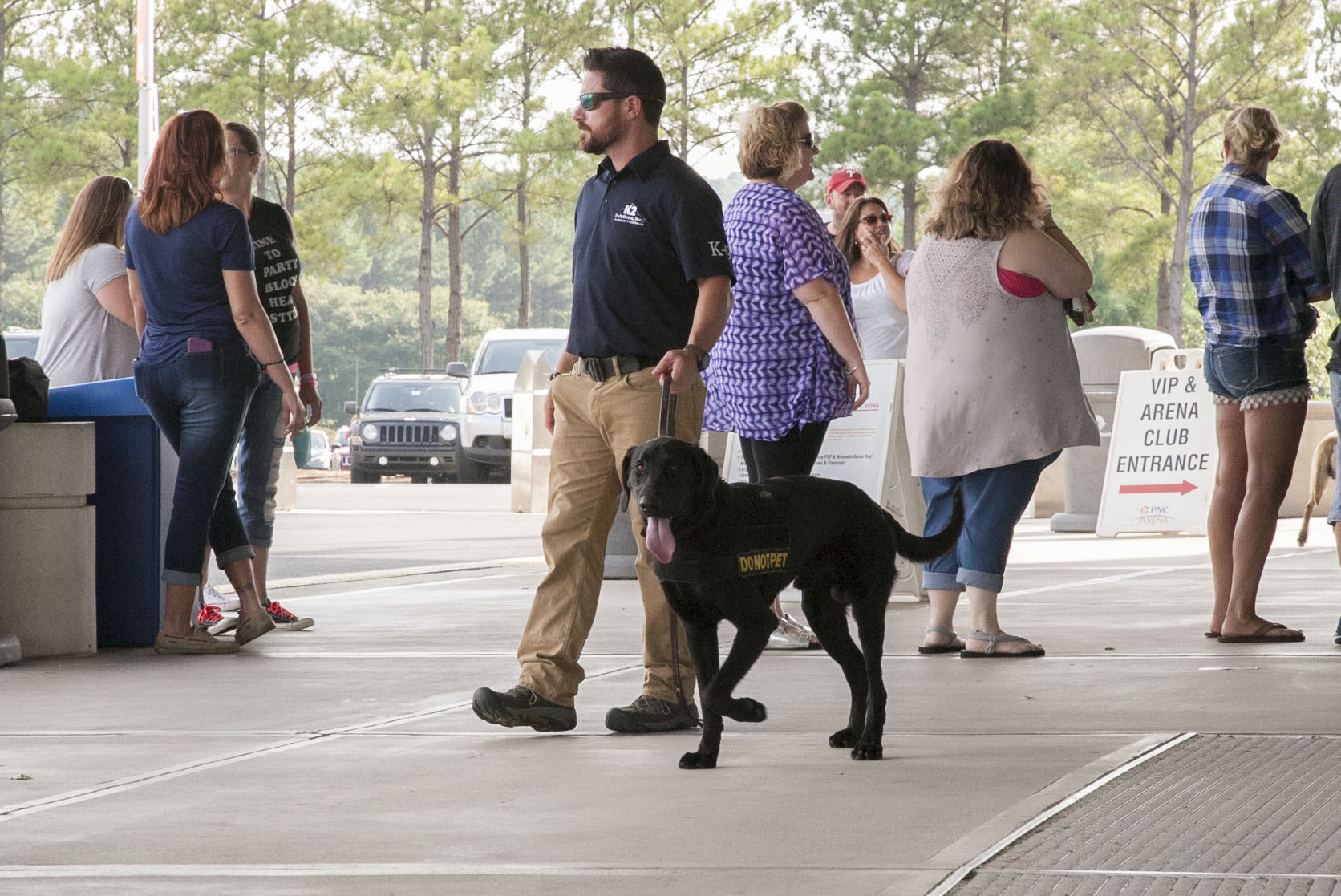 dog-detection-explosives