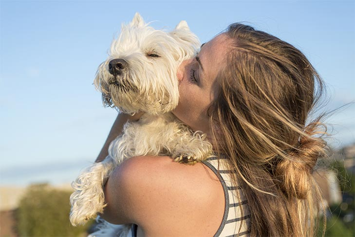 Find out Which Dog Breeds Might Match Your Zodiac Sign
