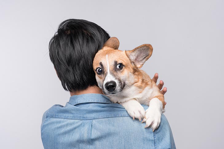 Common Fears and Phobias in Dogs and How to Help Treat Them