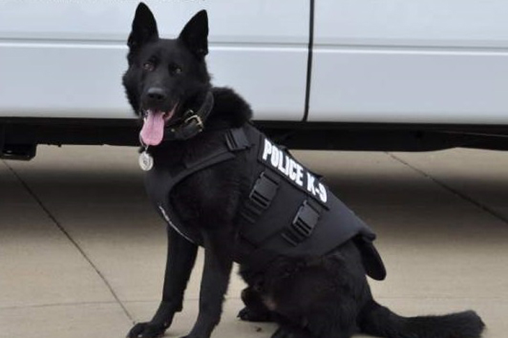 Police Dog Now Safer Thanks To Donation From Akc Club