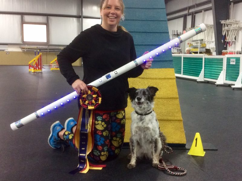 Congratulations To All Americans Invited To 2018 Akc Agility