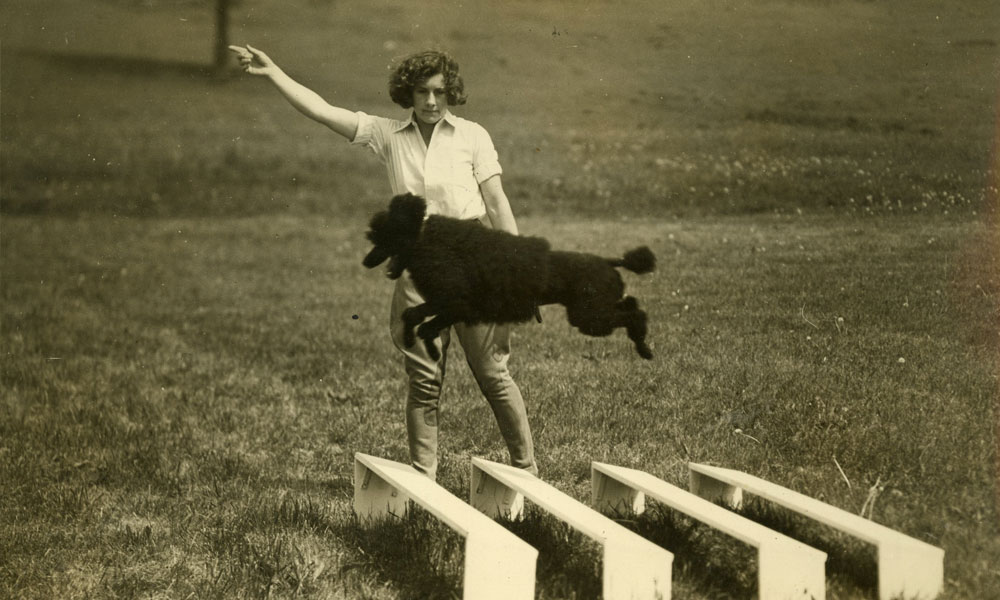 From Defiant Woman to Mother of Dog Obedience Training