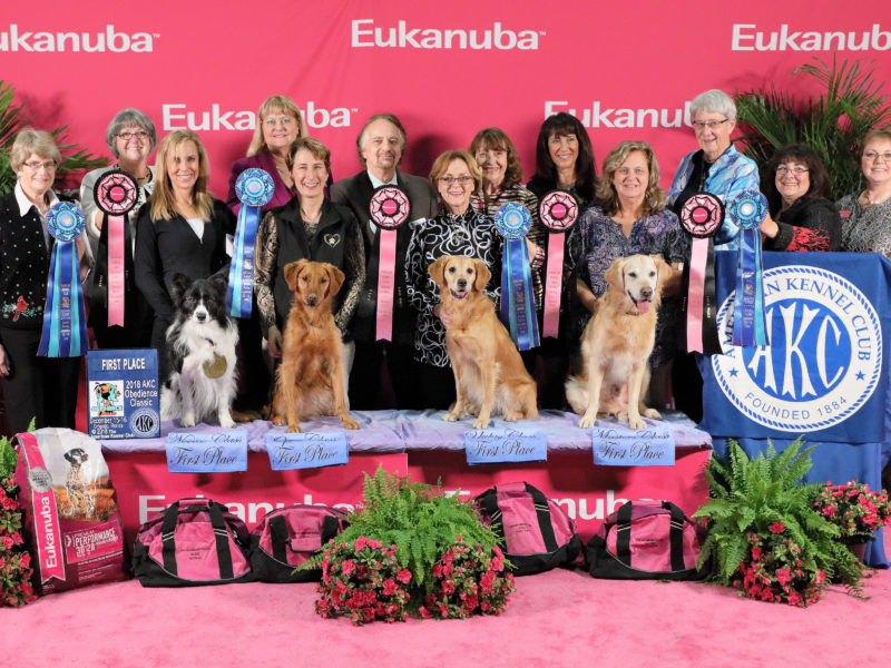 Top Dogs Crowned At 2018 Akc Obedience Classic And Akc Agility