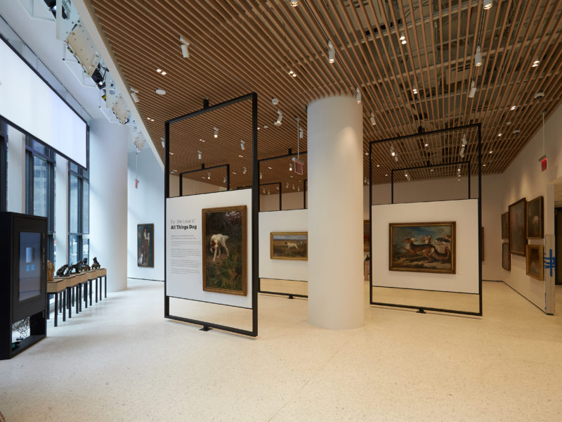 AKC Museum of the Dog to Open in NYC – American Kennel Club
