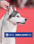 Annual Report Cover 2019 TN