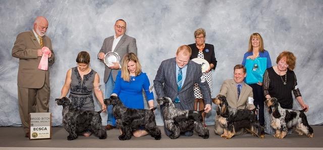 Bonnie Threlfall dog breeder winning shot