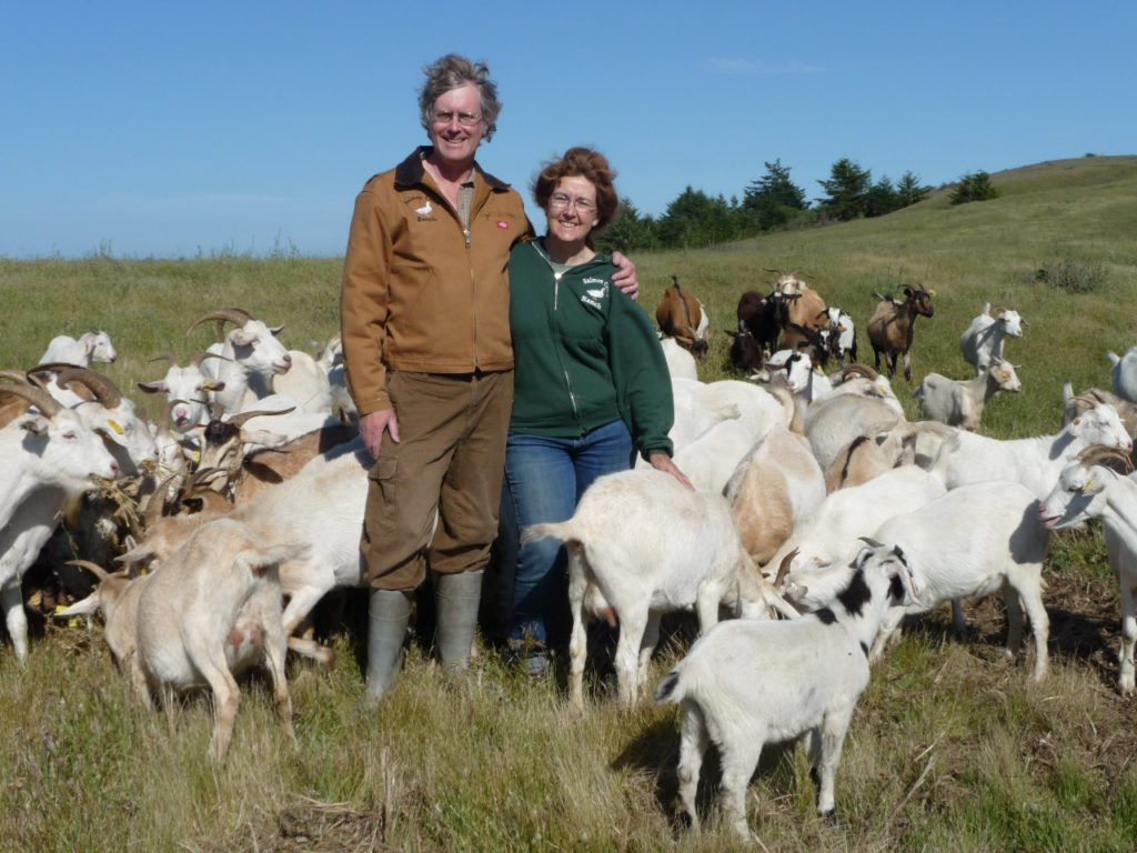 John and Lesley Brabyn are surrounded by their herd of Kiko meat goats, on their 400-acre Salmon Creek Ranch in Sonoma County, California. Photo by Jocelyn Brabyn.