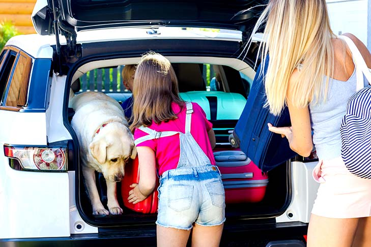 Mom and daughter filling the back of a car with luggage next to a Labrador retriever.
