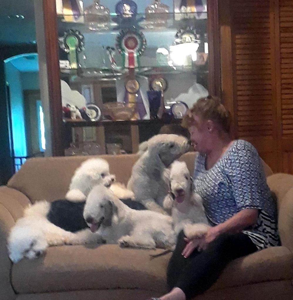 AKC Breeder Spotlight: Barbara Lundy of Patchwork