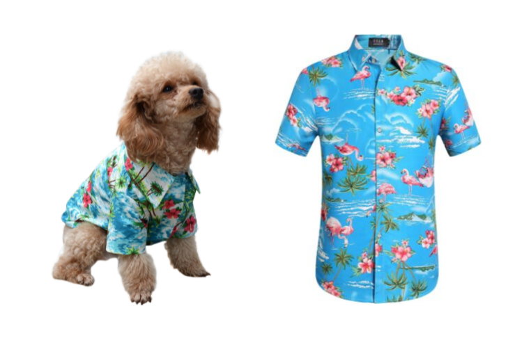5 Best Matching Hawaiian Shirts for You and Your Dog