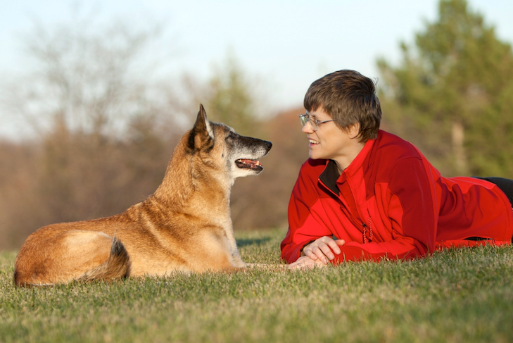 Getting It Right Is The Belgian Malinois A Good Fit For You
