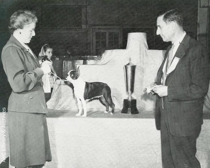 Alva Rosenberg Iconic Akc Judge Discerning Dog Show Dean