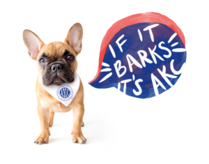 French bulldog wearing a bandanna with the AKC logo, with a speech bubble that says If It Barks, It's AKC