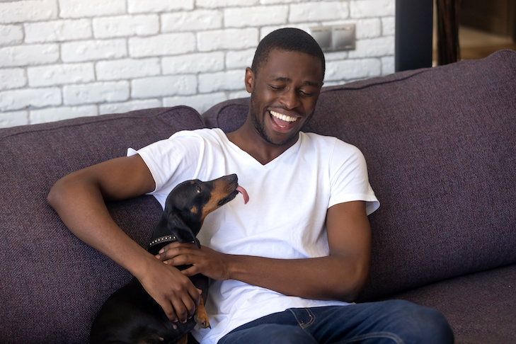 Happy African American young man sit on couch having fun with dackel dog, smiling black male relax at home with funny animal companion, millennial guy laughing playing with pet on home sofa