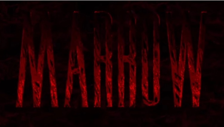 'Marrow' is a truly unsettling 2D sidescrolling adventure into madness