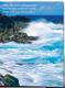 Nature Pocket Folder Ocean (set of 5)