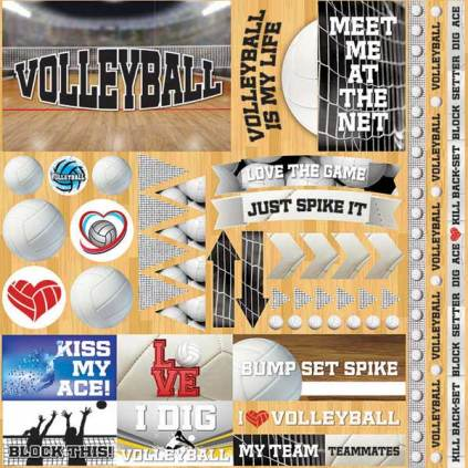 Meet Me at the Net Volleyball Sticker Sheet