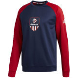 Adidas Men's USAV Sweatshirt