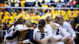 Team Spotlight: MIZZOU Tigers
