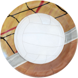 Volleyball Party Supplies - Large Plate