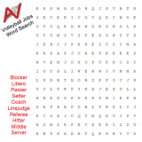 Word Search: Volleyball Jobs
