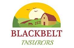 Blackbelt Insurors Logo