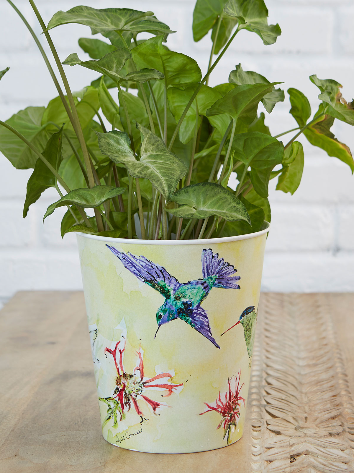 Hummingbird Just Right Bucket