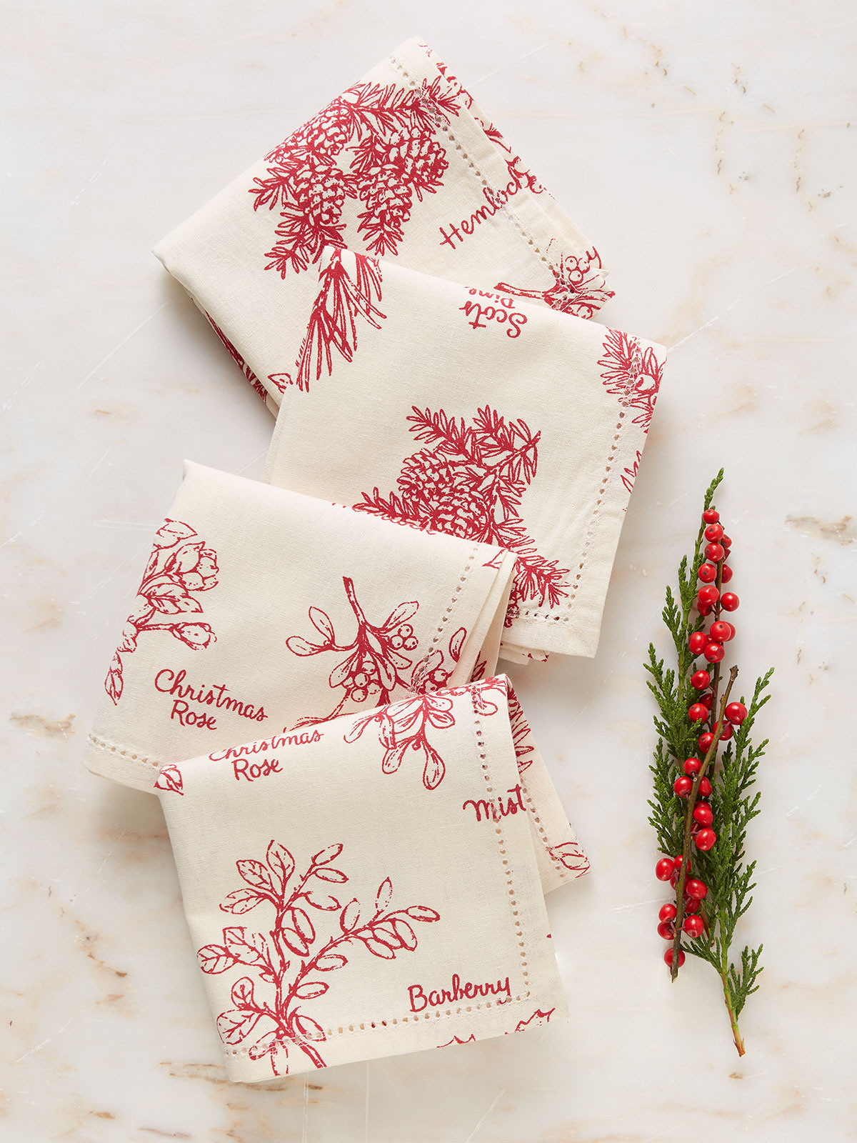 Christmas Botanical Napkin Set of 4