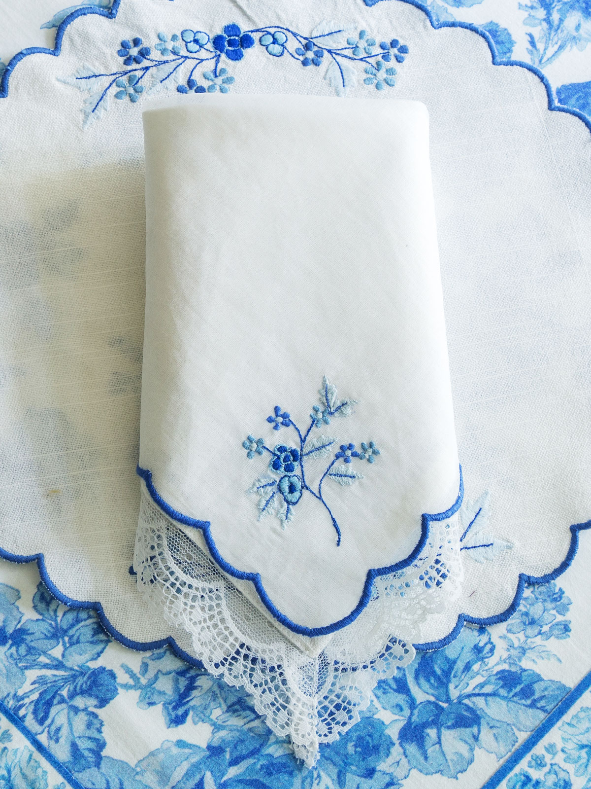 Victoria Embroidered Napkin Set of 2