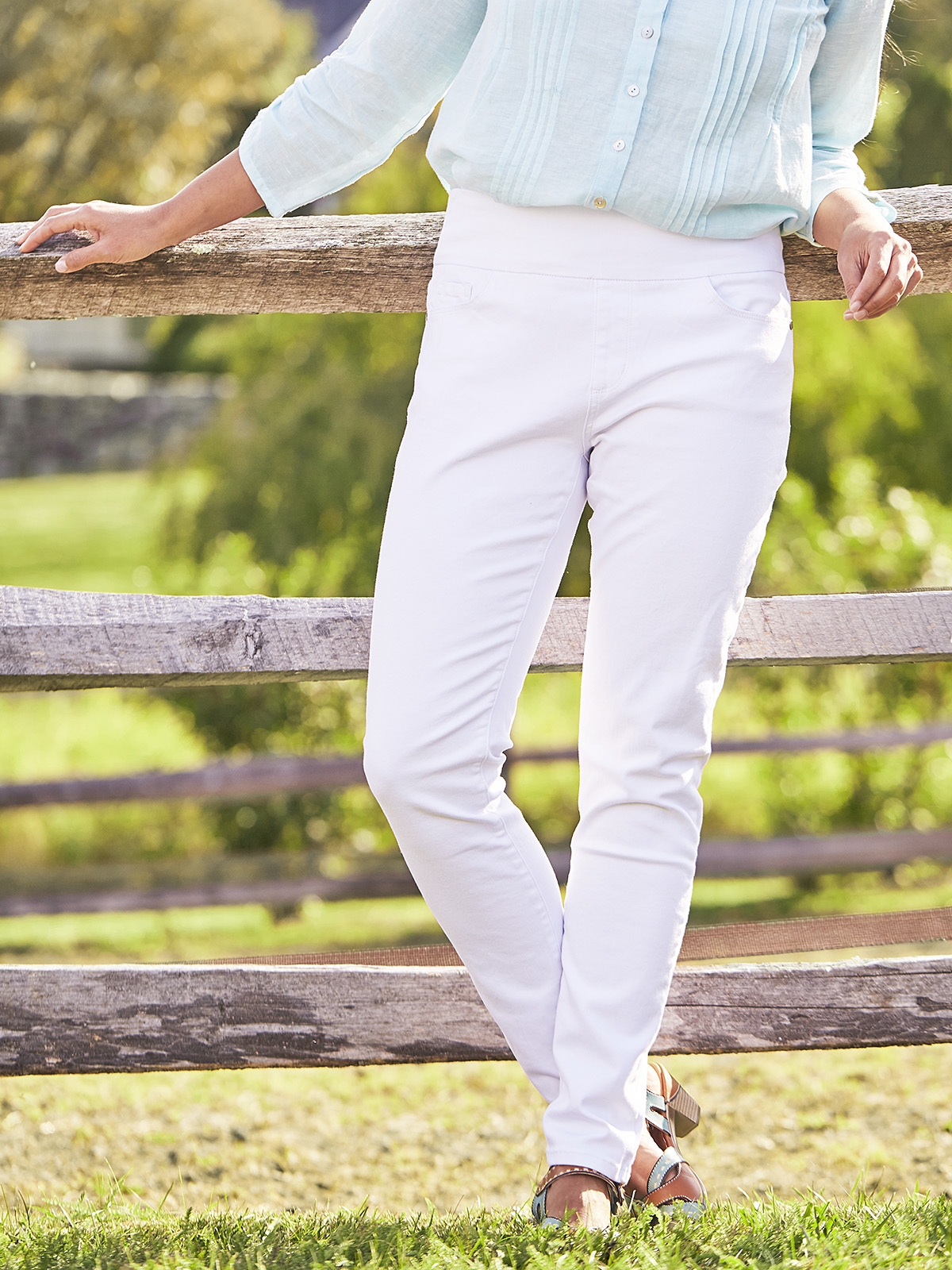 Cachet Pull-On Pant