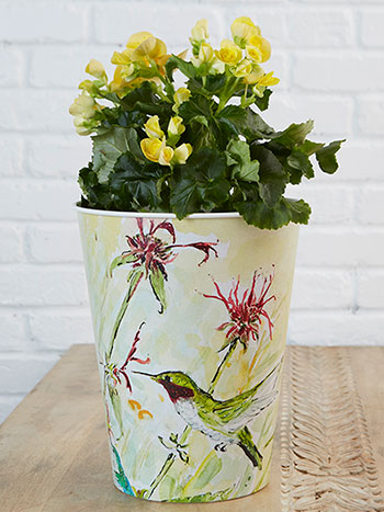 Hummingbird French Bucket