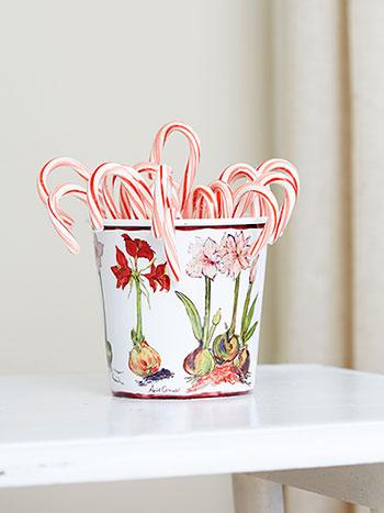 Amaryllis Berry Bucket